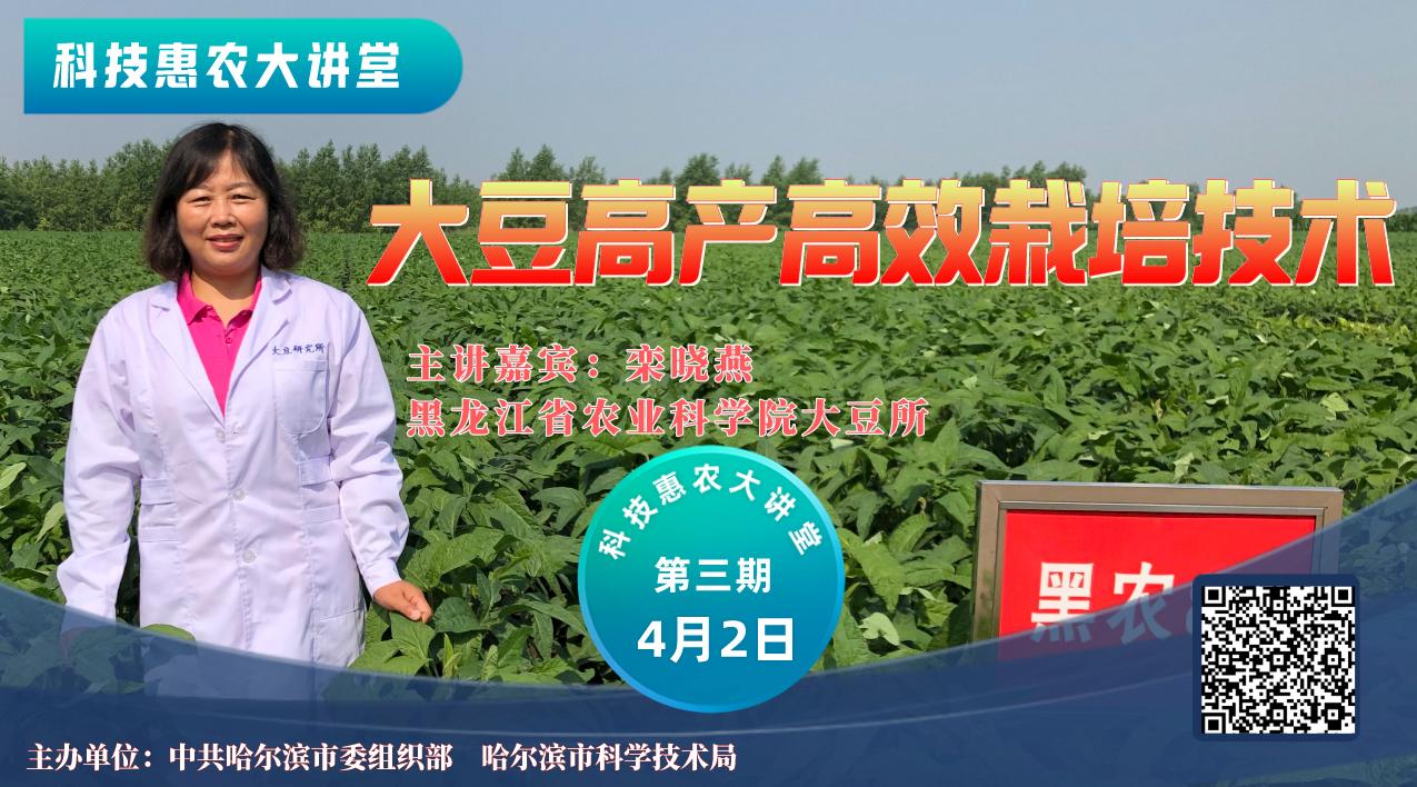 【视频回顾】【科技惠农大讲堂】大豆高产高效栽培技术